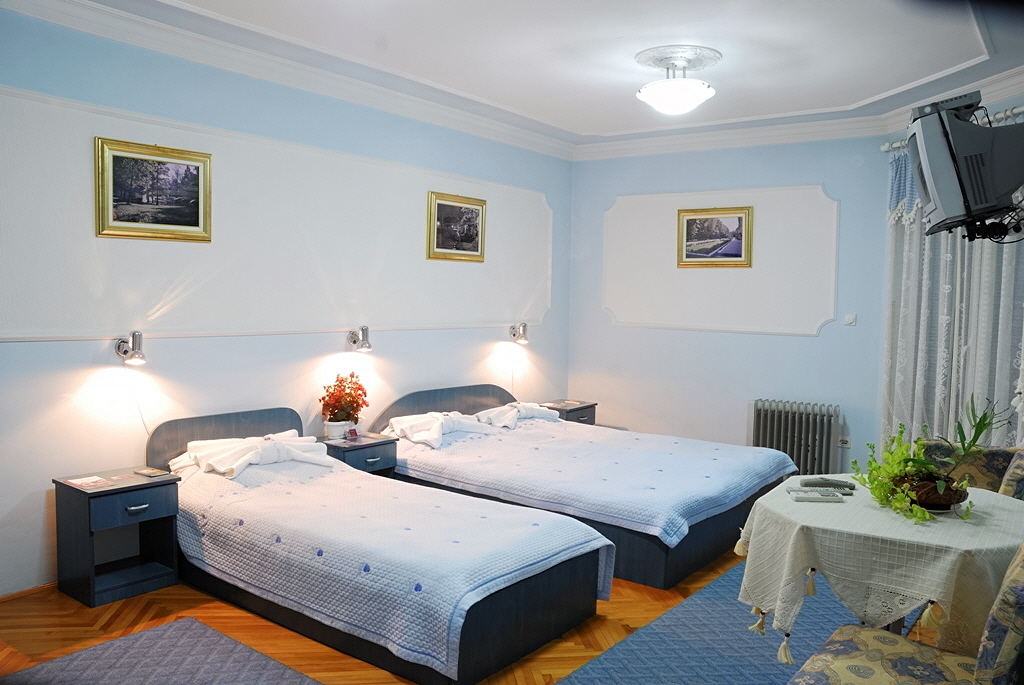 Vila Lenka 2 apartman 1