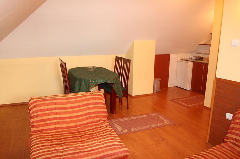 Zlatibor Vila Simović apartman 301-1
