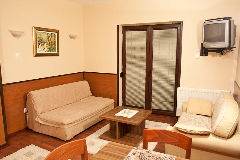 Zlatibor Vila Simović apartman 101-1