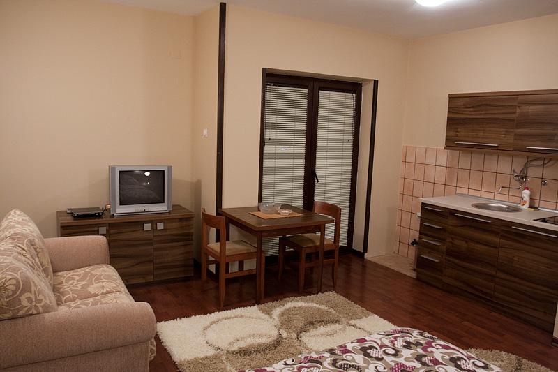 Zlatibor Vila Simović apartman 102-2