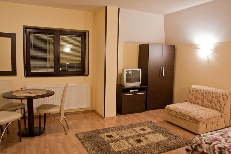 Zlatibor Vila Simović apartman 203-3