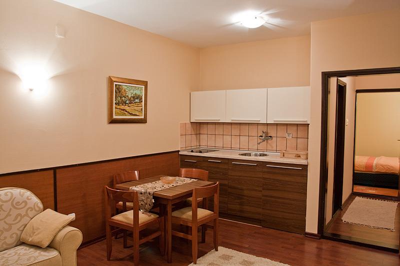 Zlatibor Vila Simović apartman 101-2