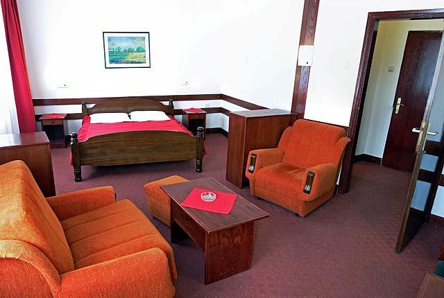 hotel Zdravljak apartman 1