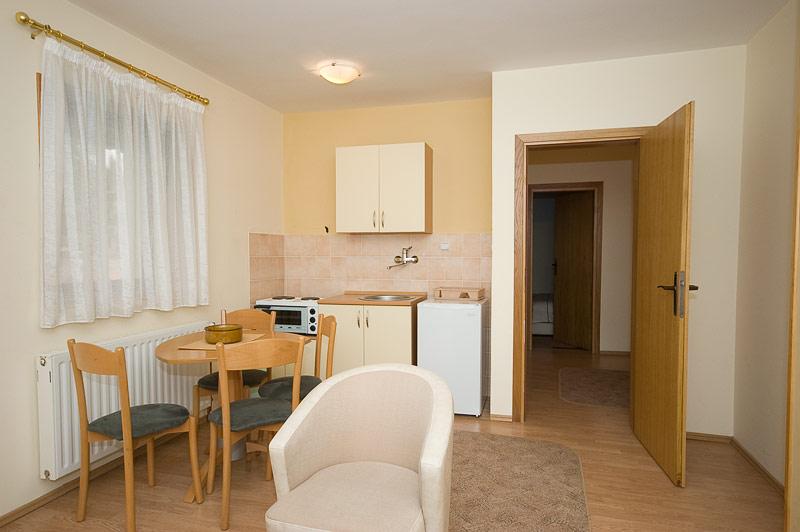 Zlatibor Vila Simović apartman 201-1