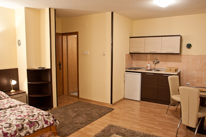Zlatibor Vila Simović apartman 203-2