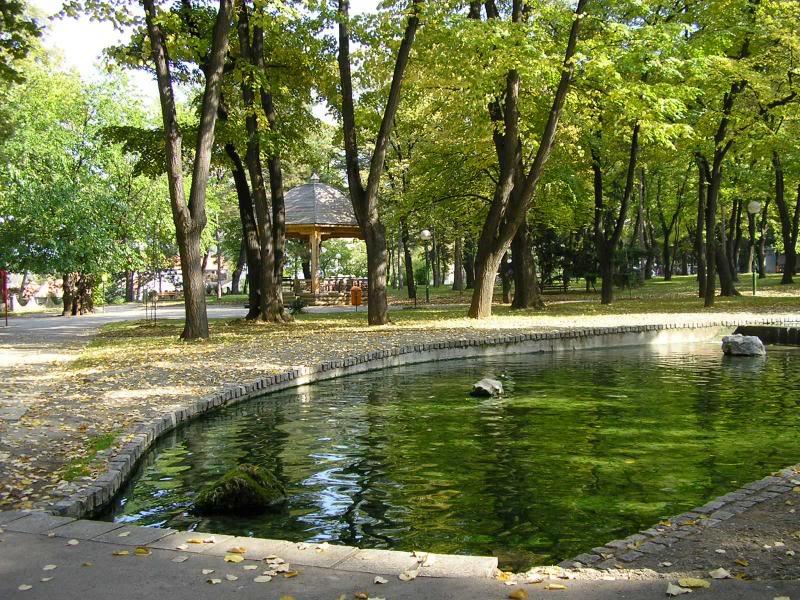 jezerce u parku